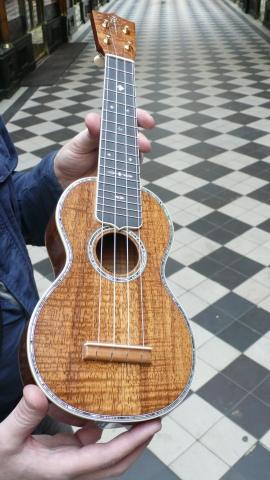 ukulele martin 5K au grand jour